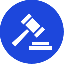 Web Governance Icon